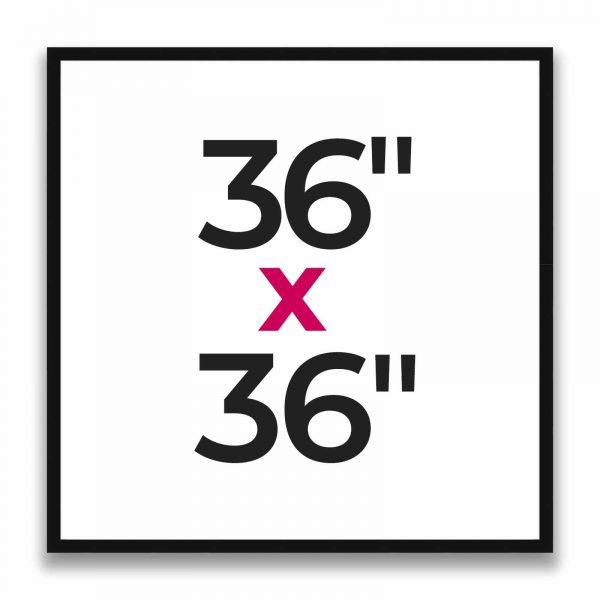 "36"" x 36"""